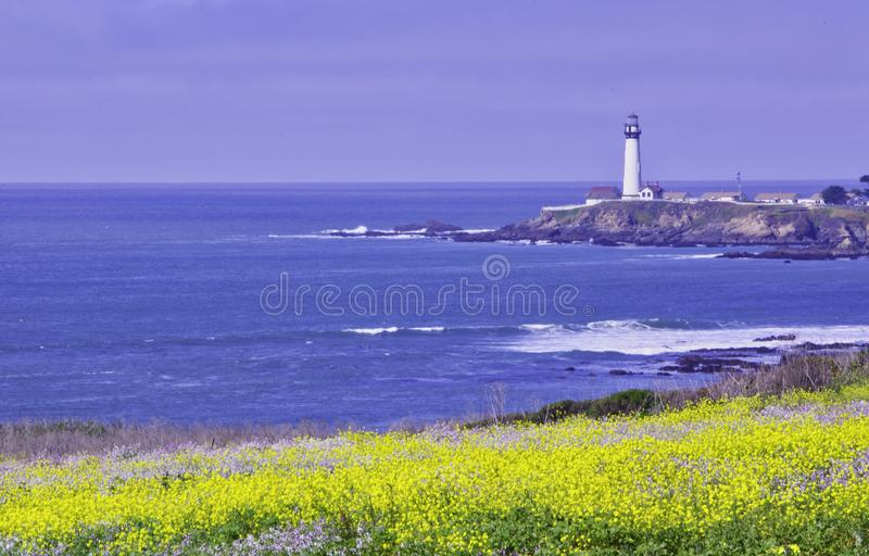 Pigeon Point Light House. Pigeon Point lighthouse with blue ocean and surf with wild mustard in the foreground stock image