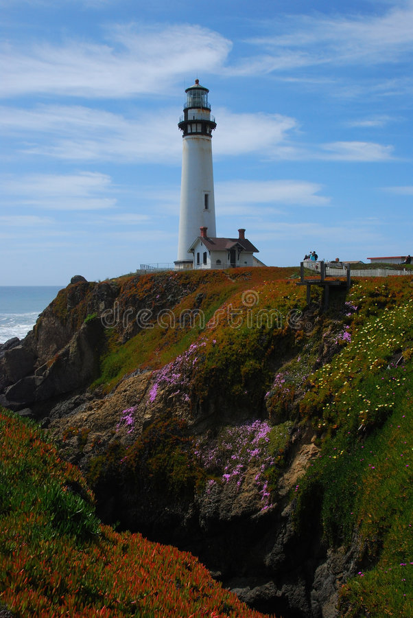 Free Pigeon Point Lightstation Stock Photography - 3202822