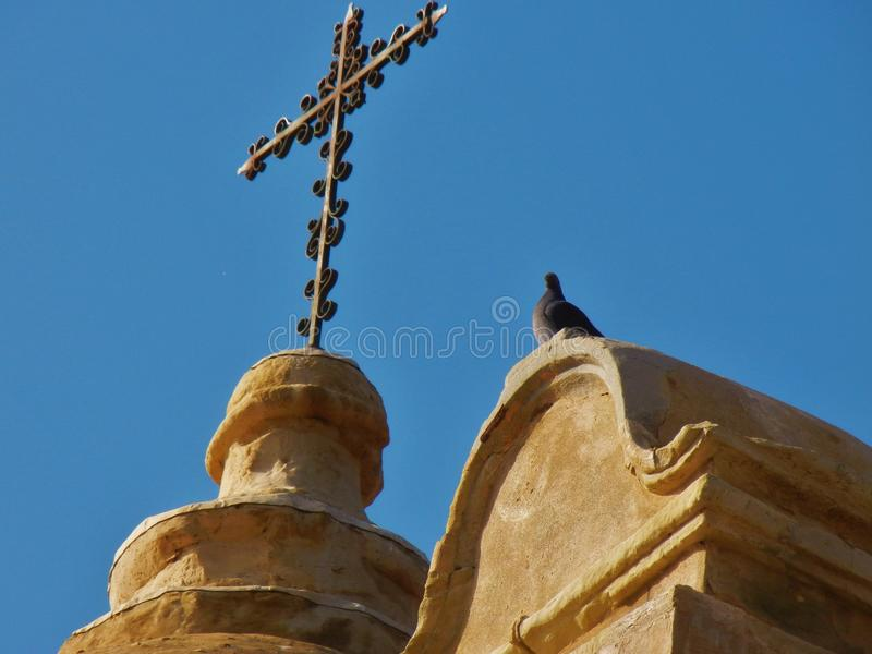Pigeon Praying. The Mission, Carmel-by-the-Sea, California stock photos