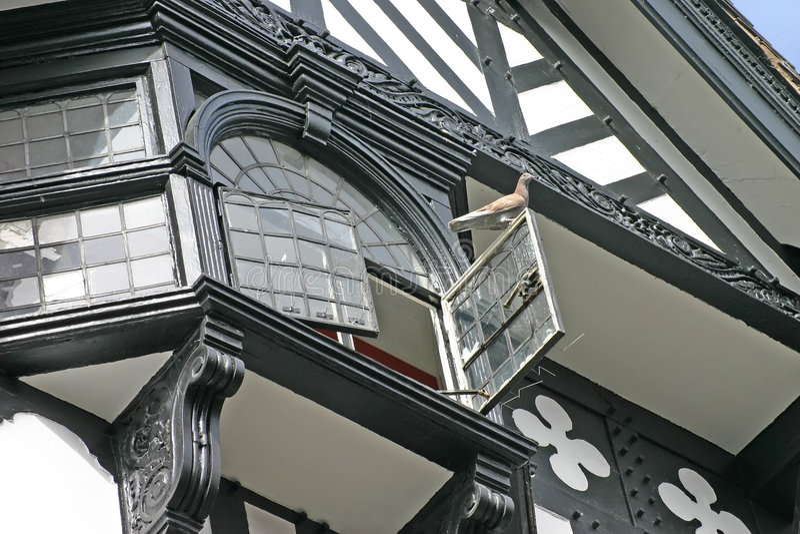 Pigeon sur l'hublot ouvert dans la vieille construction à Chester photos libres de droits