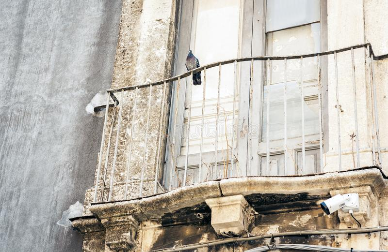 Pigeon sur le balcon dans le vieux b?timent baroque ? Catane, architecture traditionnelle de la Sicile, Italie photo stock