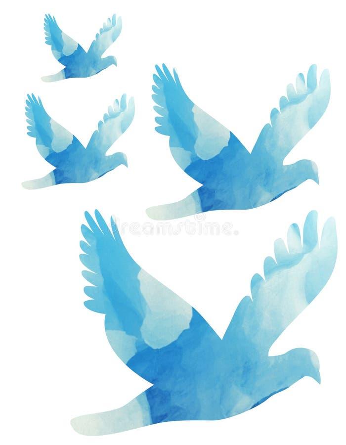 Pigeons vector illustration