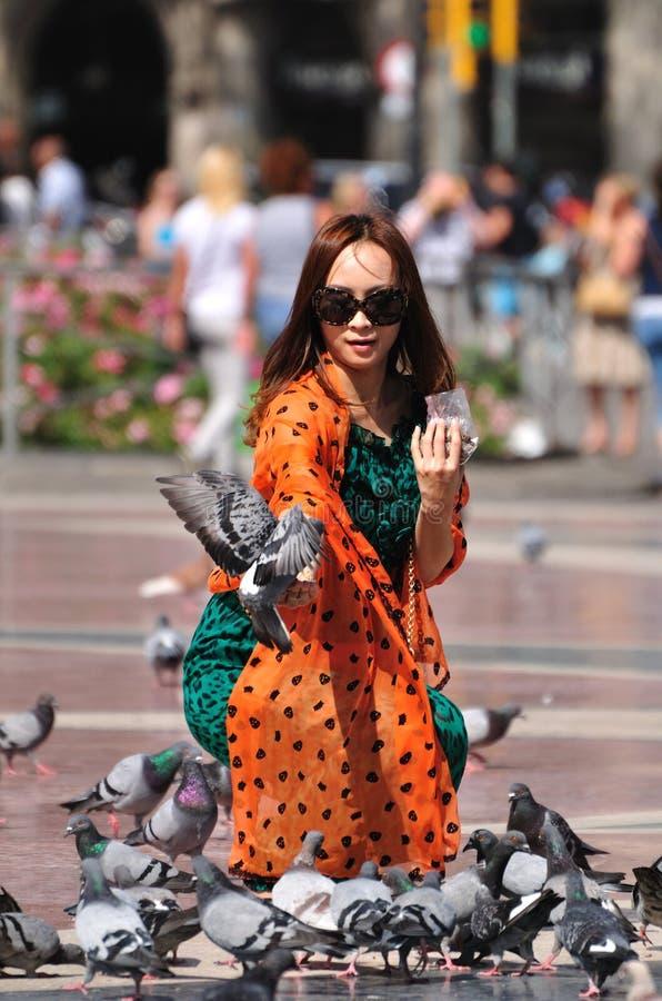 Pigeons feeding. stock photography