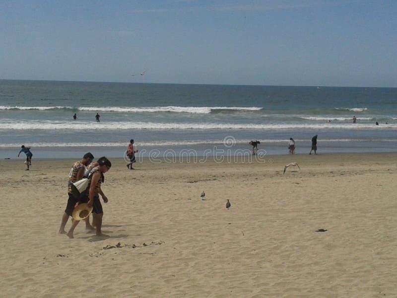Pigeons volants mouette et pélicans au-dessus de ciel bleu de mer de brise-lames d'esplanade de plage d'Ensenada de vagues nuageu image libre de droits