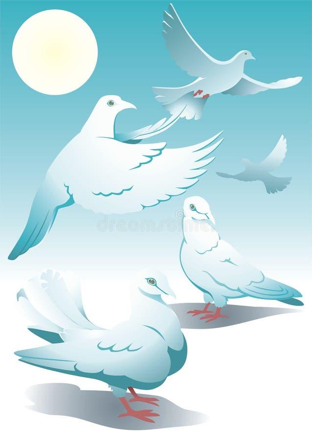 pigeons01 διανυσματική απεικόνιση