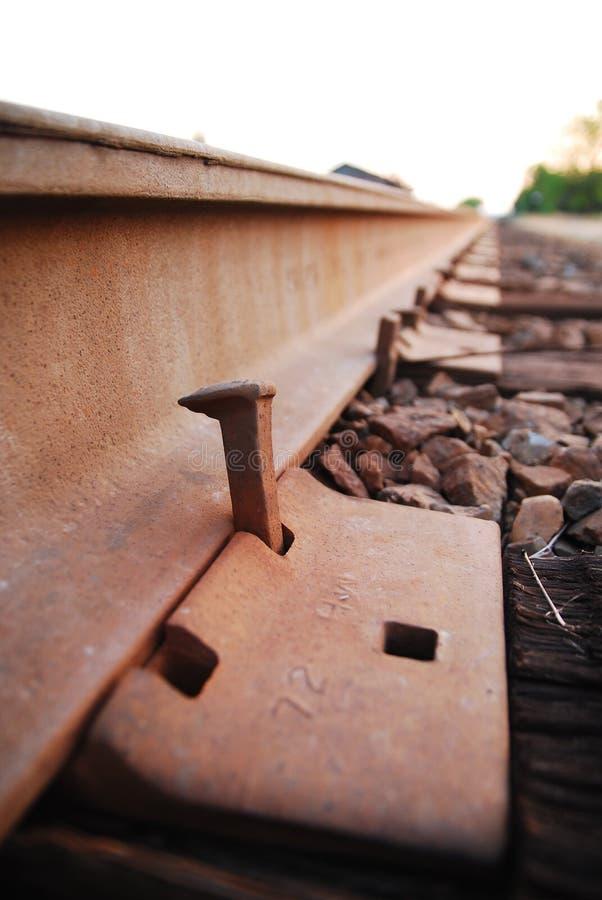 pigg för 02 järnväg royaltyfria foton