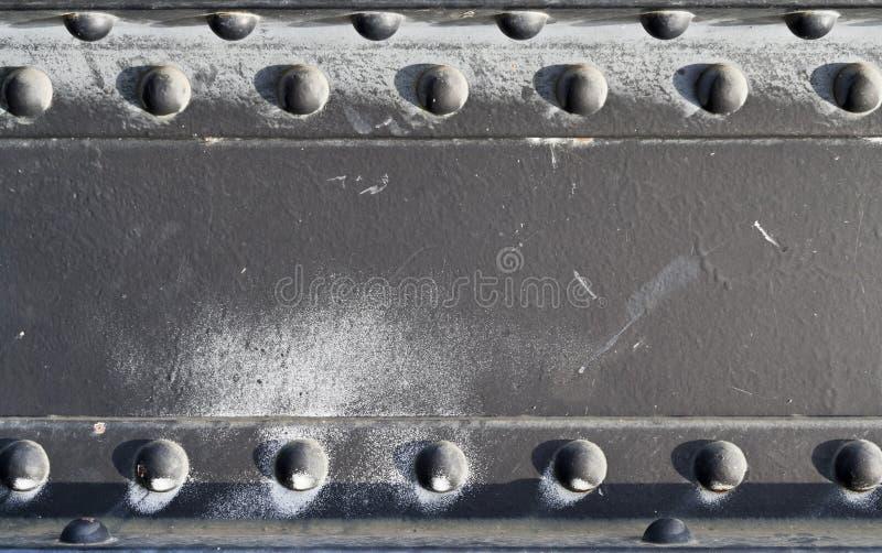 Piggar på järnplattan royaltyfria foton