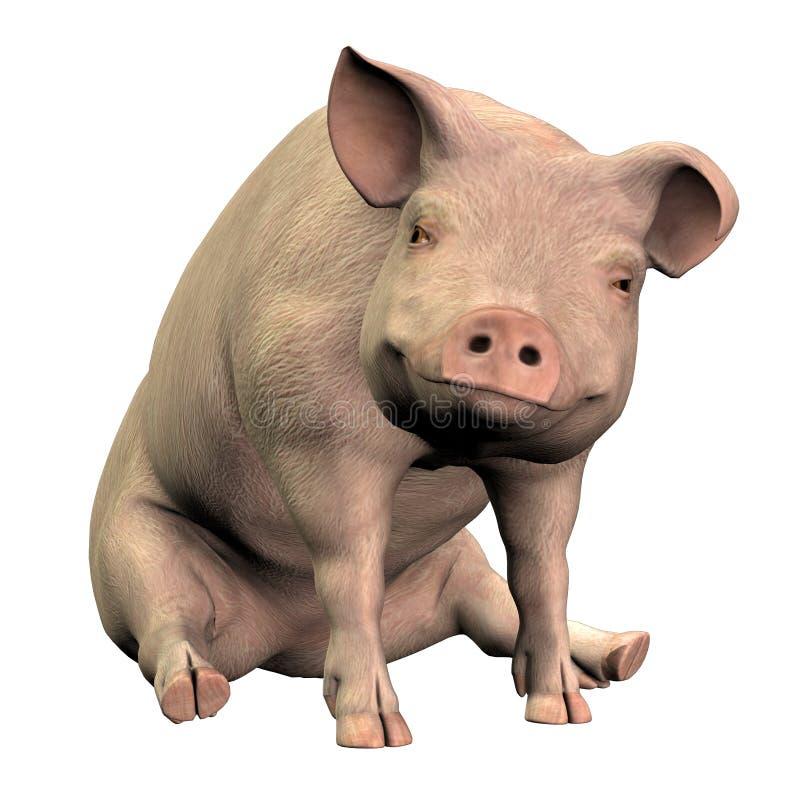 Piggie 001 royalty illustrazione gratis