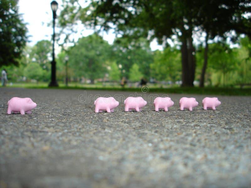 Piggies de goma imágenes de archivo libres de regalías