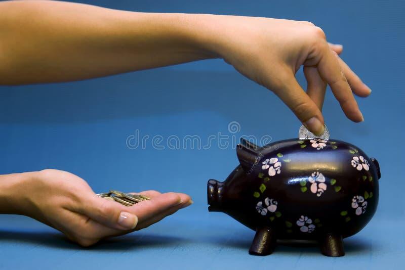 Piggy azul foto de stock royalty free