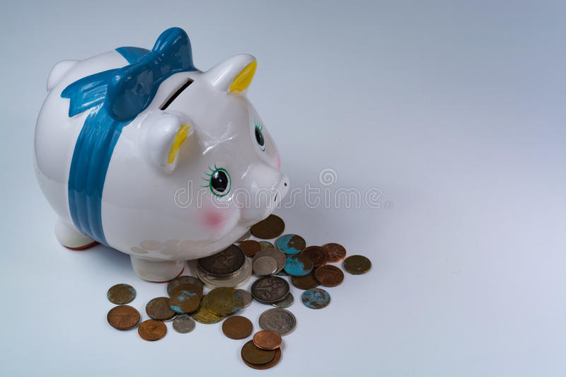 Piggy bank and coins - business concept. Isolated on white background stock photography