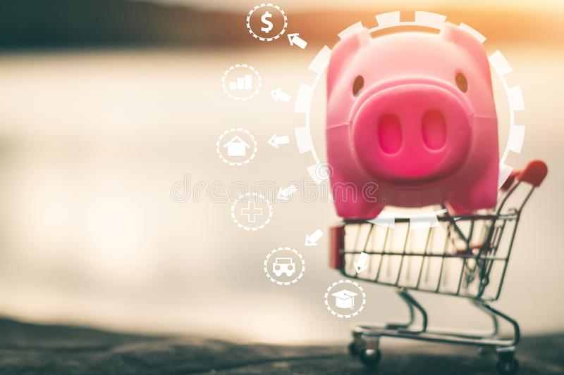 Piggy bank coins with saving money, Planning to save money for future use royalty free stock images
