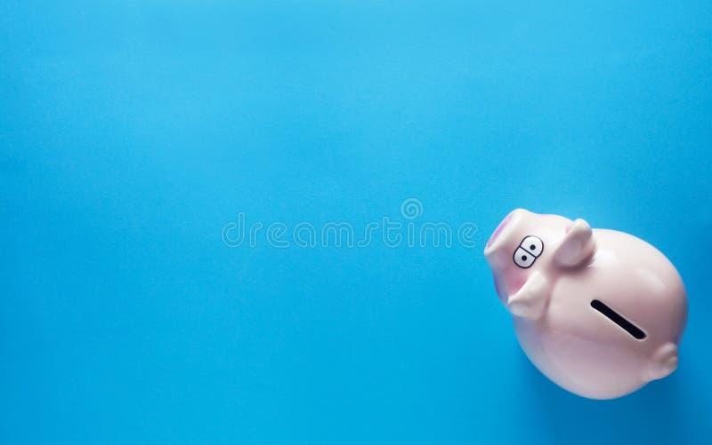 Piggy Bank immagine stock