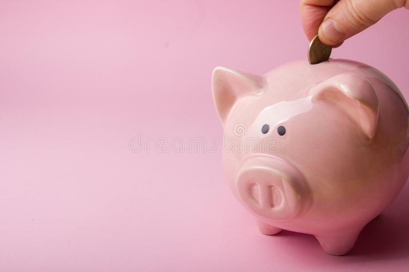 Piggy bank and dollar cash money. Business, finance, investment, saving and corruption concept. Piggy bank and dollar cash money. Business, finance, investment stock images