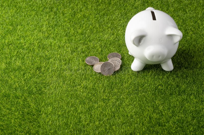 Piggy bank on grass background with quarter coins. Money saving concept. Saving. view from above.  stock photo
