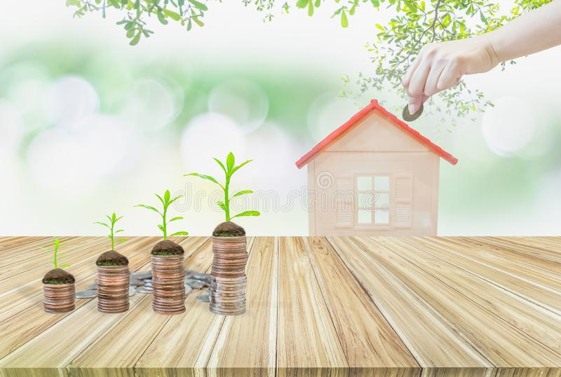 Piggy bank green and house model on wooden table,hand holding coin,tree growing on stack coins,Background nature blurred,concept royalty free stock photo