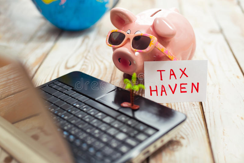 Piggy bank, laptop, globe,palm- tax haven concept. Piggy bank, laptop, globe, - tax haven concept royalty free stock photos