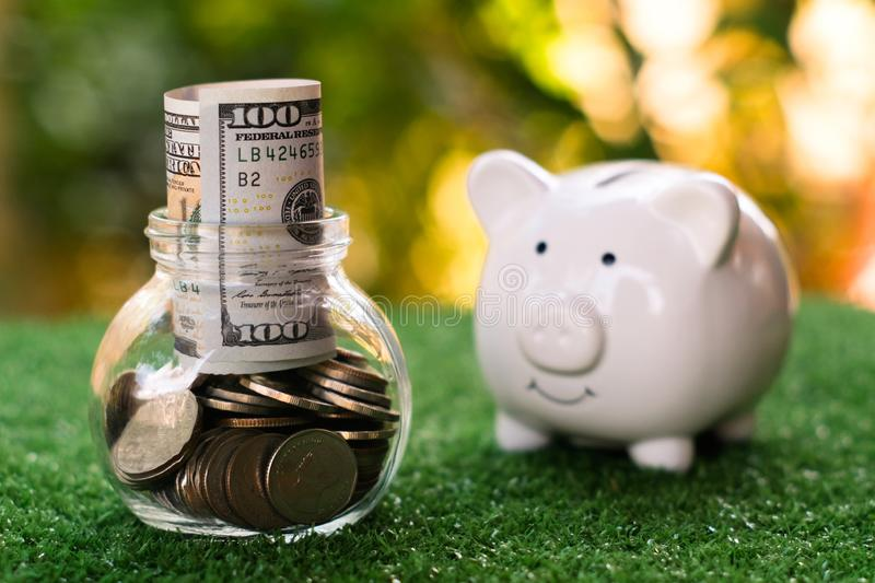 Piggy bank looking on glass of jar that fulled of money. Money savings concept. Copy space save coin pile rich finance business investment cash currency wealth royalty free stock photos