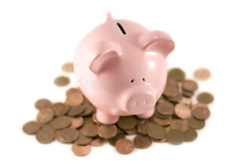 Piggy bank sat on coins