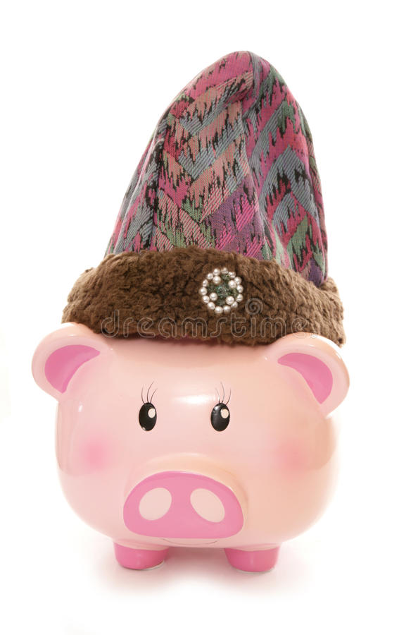 Piggy bank wearing purple wooly hat. Cutout royalty free stock photo