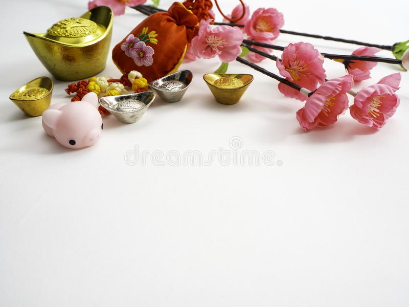 Piggy Chinese new year 2019 background stock photography