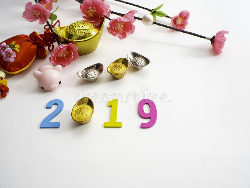 Piggy Chinese new year 2019 background stock photo