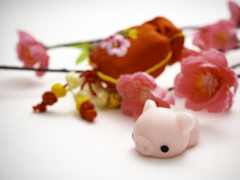 Piggy Chinese new year 2019 background royalty free stock images