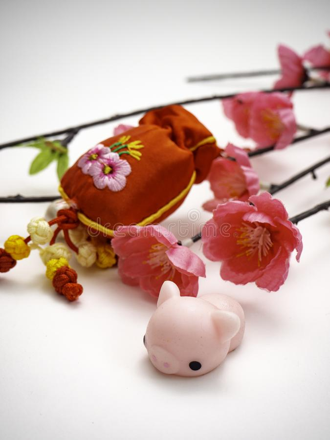 Piggy Chinese new year 2019 background stock photos
