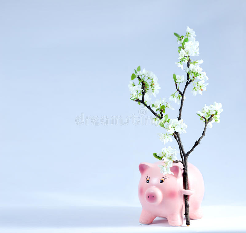 Piggy coin bank on light blue background with spring flowers stock download piggy coin bank on light blue background with spring flowers stock image image mightylinksfo
