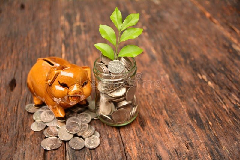 Piggy en stapelmuntstukken en installatie voor sparen geld en financieel, Ta royalty-vrije stock fotografie
