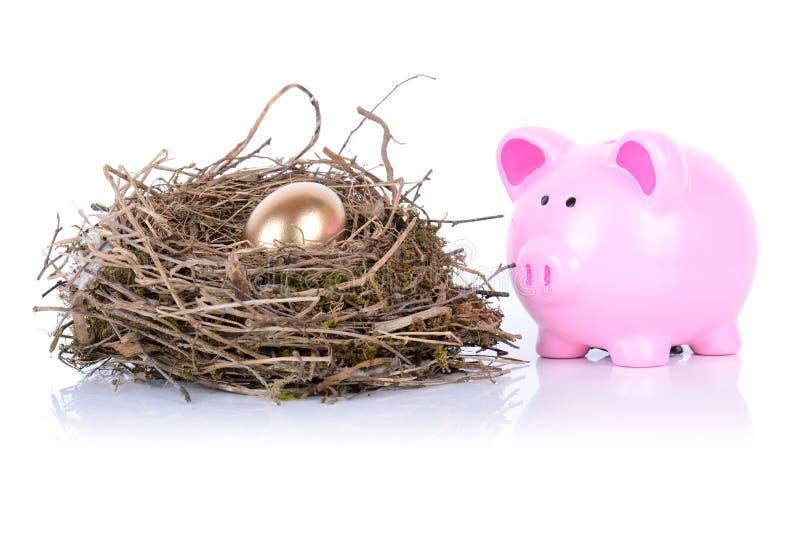 Download Piggy Golden Egg Royalty Free Stock Images - Image: 31374609