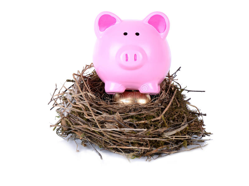Download Piggy golden nest egg stock photo. Image of animal, ideas - 31631194