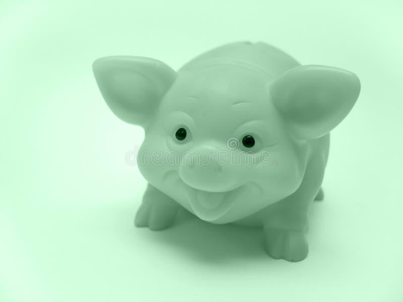 Piggy Grupp Royaltyfri Fotografi
