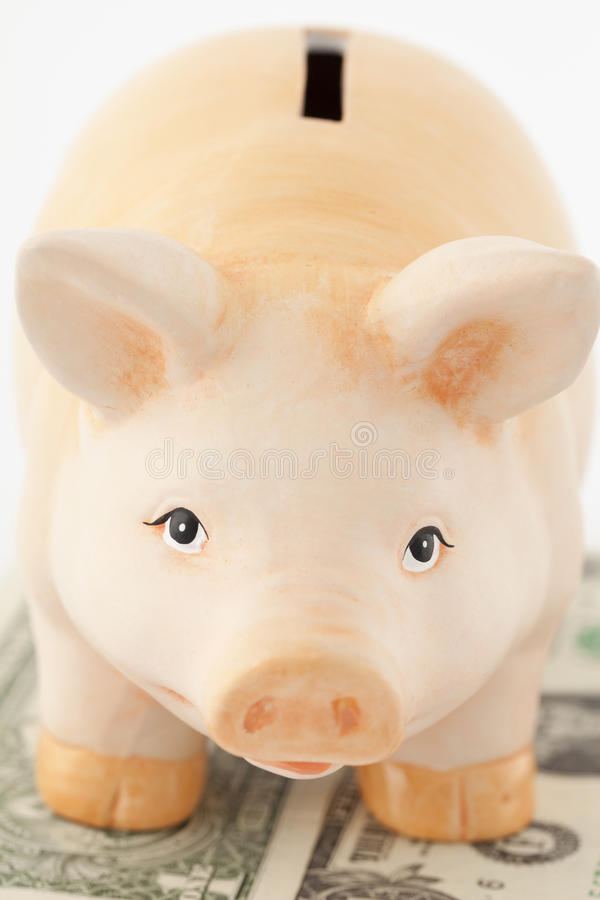 Piggy On Money Royalty Free Stock Images
