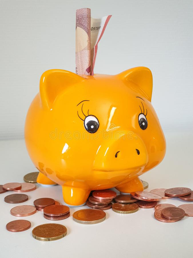 Piggy money bank with coins royalty free stock photography