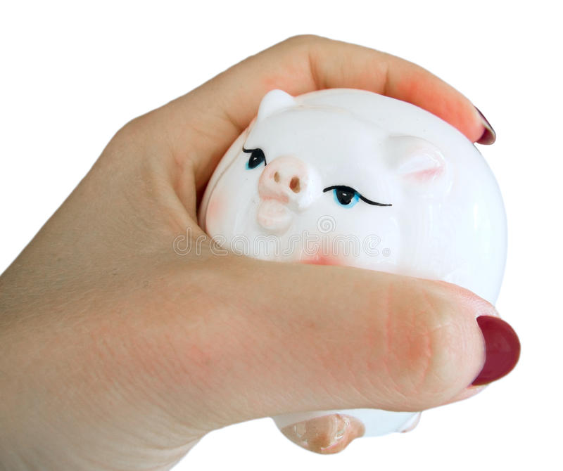 Download Piggy Moneybox In Woman Hand. Stock Image - Image: 14054623