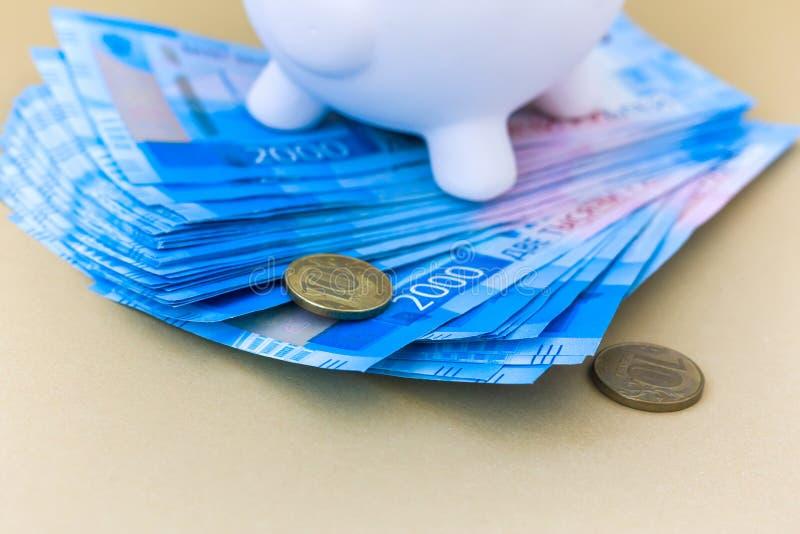 Piggy packa ihop med pengar och myntar royaltyfri foto