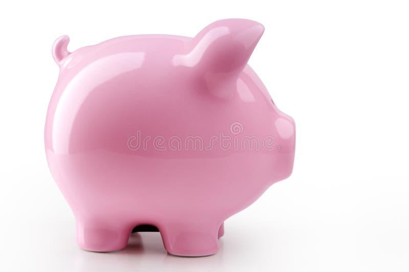Piggy Querneigung stockfotos