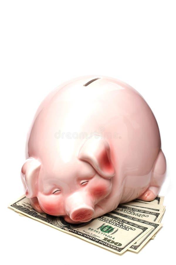 Piggy Querneigung auf Dollar stockfoto