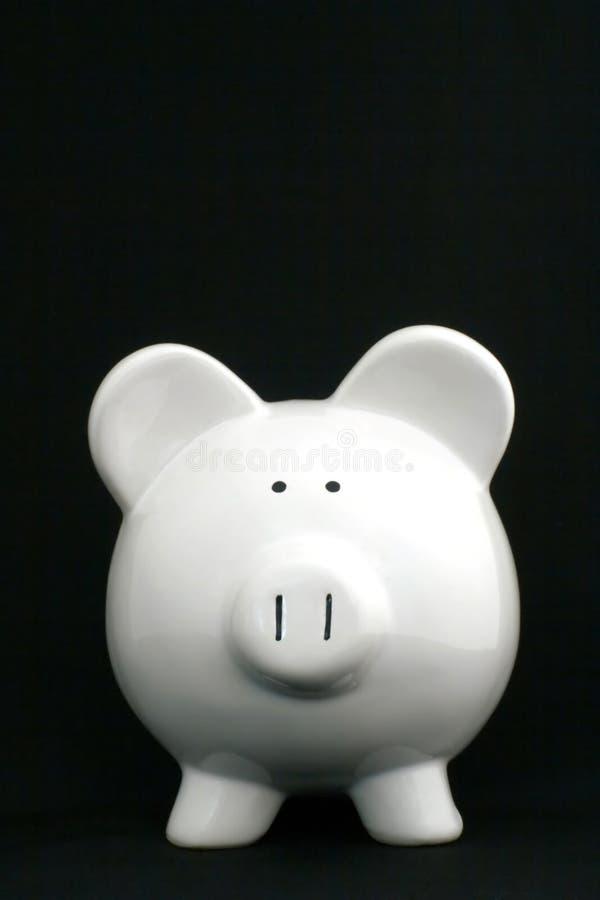Piggy Querneigung, einzeln lizenzfreies stockbild