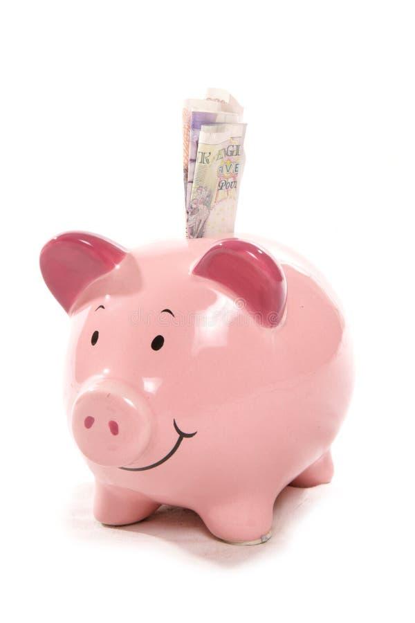 Piggy Querneigung mit britischen Bargeldanmerkungen stockfotos