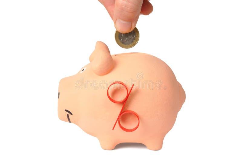 Piggy Querneigung und Euromünze lizenzfreie stockbilder