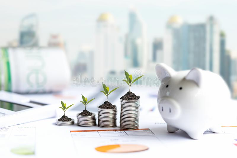 Piggy and the tree  growing on money coin stack for investment and saving,  business newspaper with financial report on desk of in stock photo