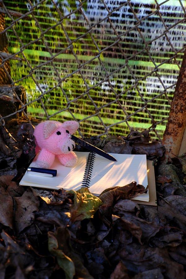 Piggy woolen rosa Schweinschreibpapier, fallendes Blatt mit gelbem Sonnenunterganglicht stockfotos