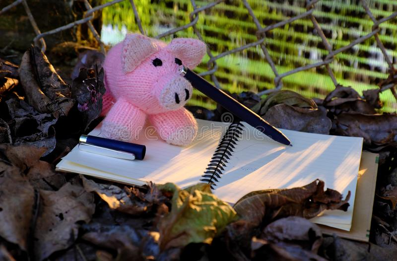 Piggy woolen rosa Schweinschreibpapier, fallendes Blatt mit gelbem Sonnenunterganglicht stockfotografie