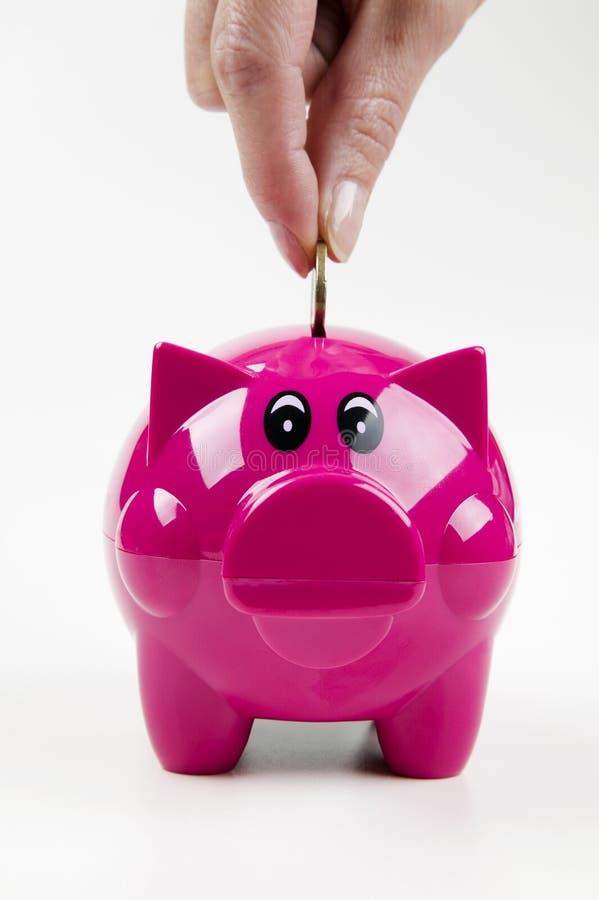 Download Piggybank stock image. Image of save, note, finger, pork - 21977527