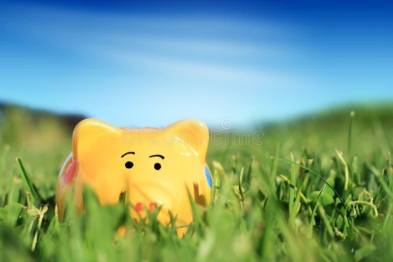 Piggybank fotografia de stock