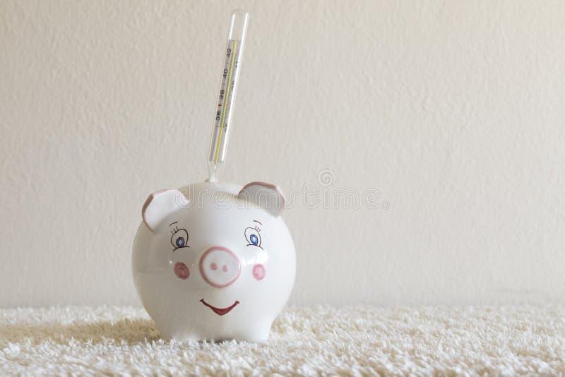 Piggybank Con Termometro Que Simboliza La Gripe Porcina O Concepto Financiero Foto De Archivo Imagen De Fondo Copia 140319848 Desde su invención ha evolucionado mucho, principalmente a partir del desarrollo de los termómetros digitales. dreamstime