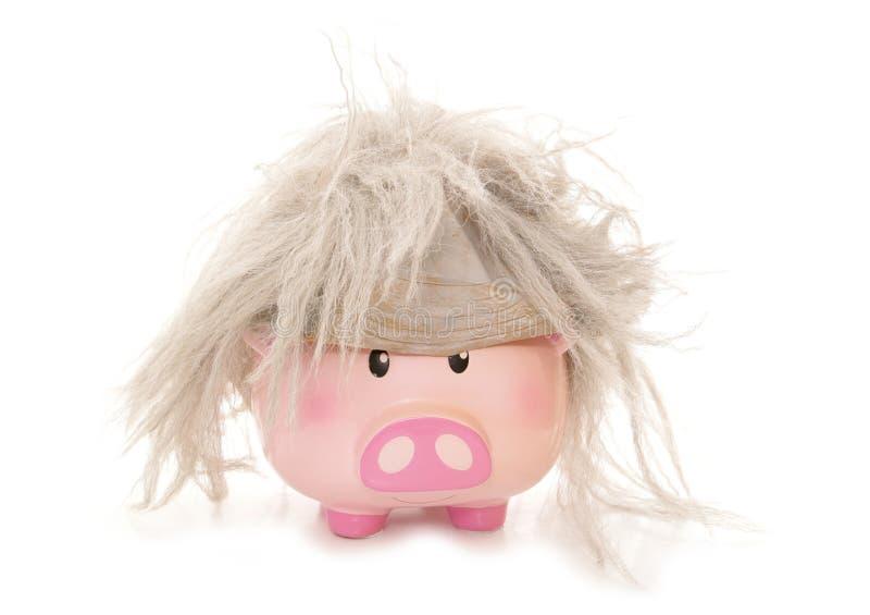 Piggybank wearing a beetlejuice wig. Cutout royalty free stock photos