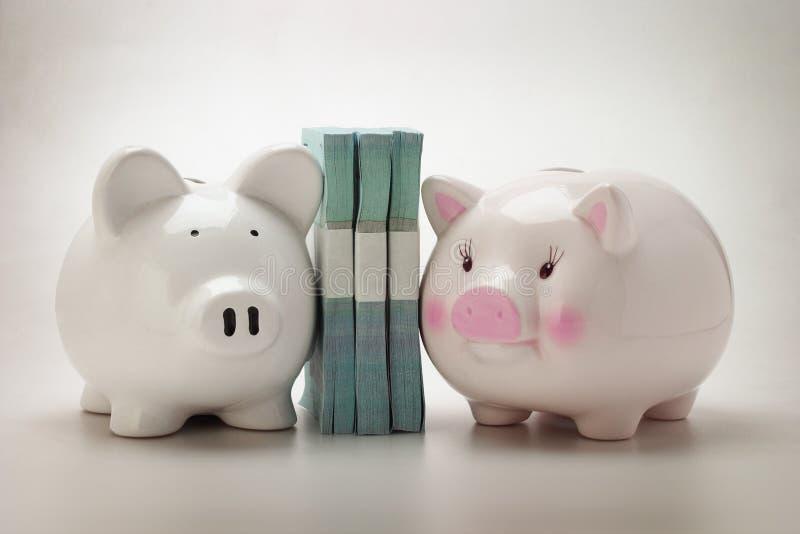 Piggybanks e soldi di carta immagini stock